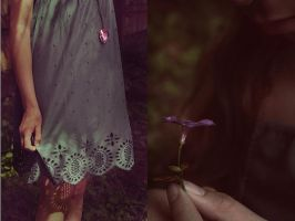 Dreamscapes and Fairytales by SoraBelle