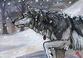Determination - ACEO for MayaWolf13 by wolf-minori