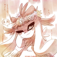 The Magic of FLOWER CROWNS by Nayobe