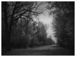 October Road by nowhere-usa