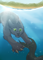 Hunting in Riverclan by Shadowstar-12
