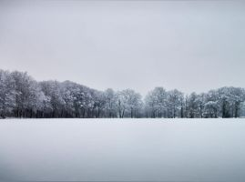 Winterscape by AbstractPotential