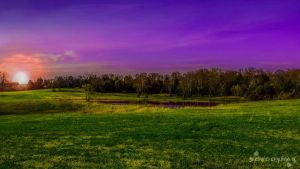 Sunset over a pond. by ocue8ball