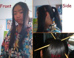 Gakupo-inspired hairstyle by NickyW093