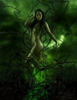 Queen of Thorns by colero