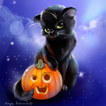 Black Kitty with Pumpkin by alfadesire