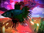 Betta Fish by that-sumin
