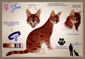Zoe's Serval Form by ScottishRedWolf