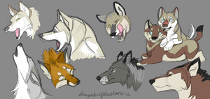 Canids by daughterofthestars