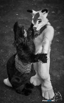 May I have this dance? by FotoFurNL