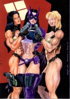 The Body Doubles take Huntress by Dracowhip