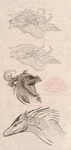 Dragon Heads Sketch and Lineart practice by Wings-of-the-Heavens