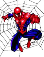 Spider-Man Clrs by Comicfanatic83