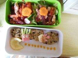 Bento Terrine by Tamilucis