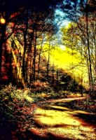 The Autumn Day by RiegersArtistry