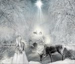 Reindeer Night Animated by magicsart