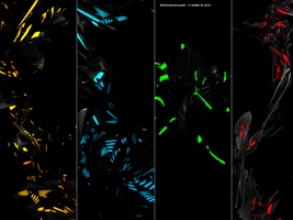 Bioluminescence C4D Pack by clyzm