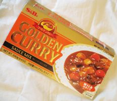 Golden Curry Book by chostett