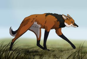 Tall like a maned wolf by BecciES