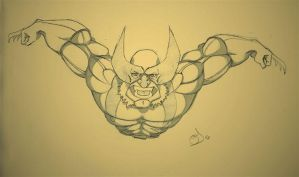 Wolverine - Sketch by Schoyhan