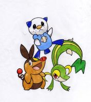Isshu Starters by mariot4747