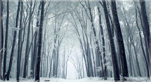 Winterland by kazzdavore
