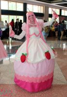 Metrocon 2014 5 by CosplayCousins