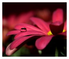 waterdrop 8 by mzkate