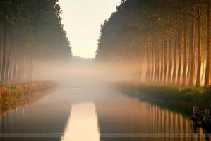Misty Morning in Damme by JurgendeWitte