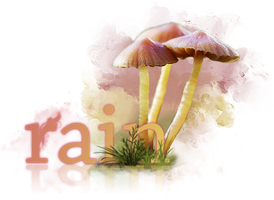 Shrooms by H3llish