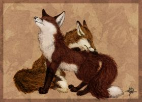 Caress by Silvixen