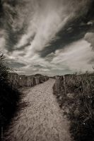 Le chemin de nos illusions by Rayon2lune
