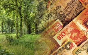 Nature and Money by MeGustaDeviantart