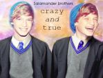 Salamander Brothers by frauLOVe
