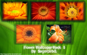 Flower Wallpaper Pack 1 by sagorpirbd