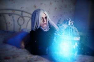 A cage of wonders by MilliganVick