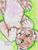 playfull lion cub by NatsumeWolf