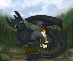 HTTYD - Hiccup and Toothless by sapphiresky1410