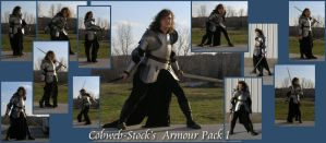Armour Pack 1 by Cobweb-stock