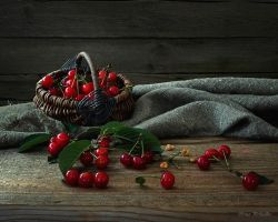 Still life with cherries early by Daykiney
