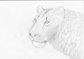 Cave Lion by AnonymousLlama428