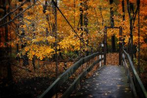 Foot Bridge by S-H-Photography