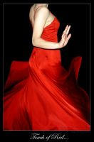 Touch of Red by KellyLMartellPhoto