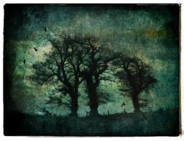 Three Trees Textured by struckdumb