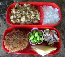 New Recipes Bento by Demi-Plum