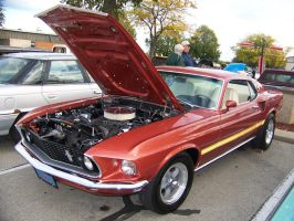Mach 1 Mustang by PhotoDrive