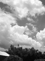 Summer Sky by shafin