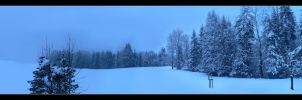 Frozen Forest Panorama by CelticW0lf