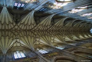 Winchester Cathedral Roof 3 by Okavanga
