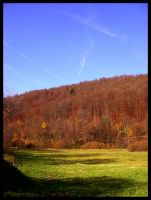 Meadow in the Spessart by KrisSimon